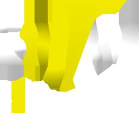 Stage pilotage Lyon, Simulation automobile Lyon, rallye, F1, team building, séminaires: I-Way